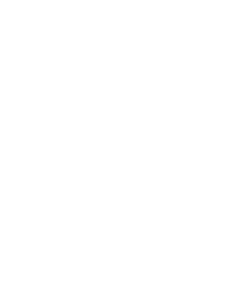 DSS Icons-02